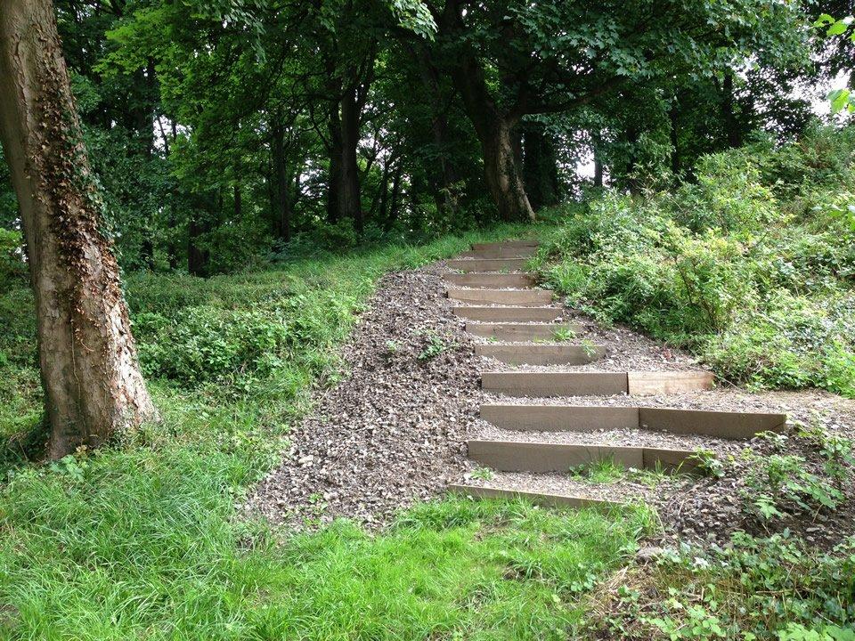 after forest steps